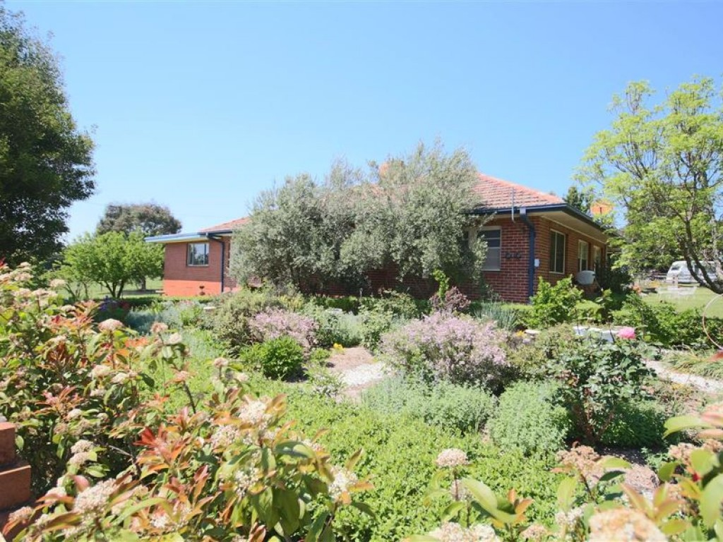 Farm for Sale - 456 Mt Lindesay Road, Tenterfield, NSW - Farm Property