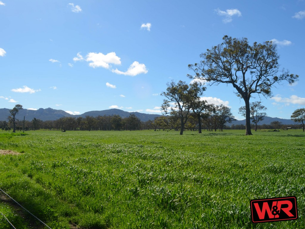 Farm for Sale - Lot 5655 Yellanup Road, Narrikup, WA - Farm Property