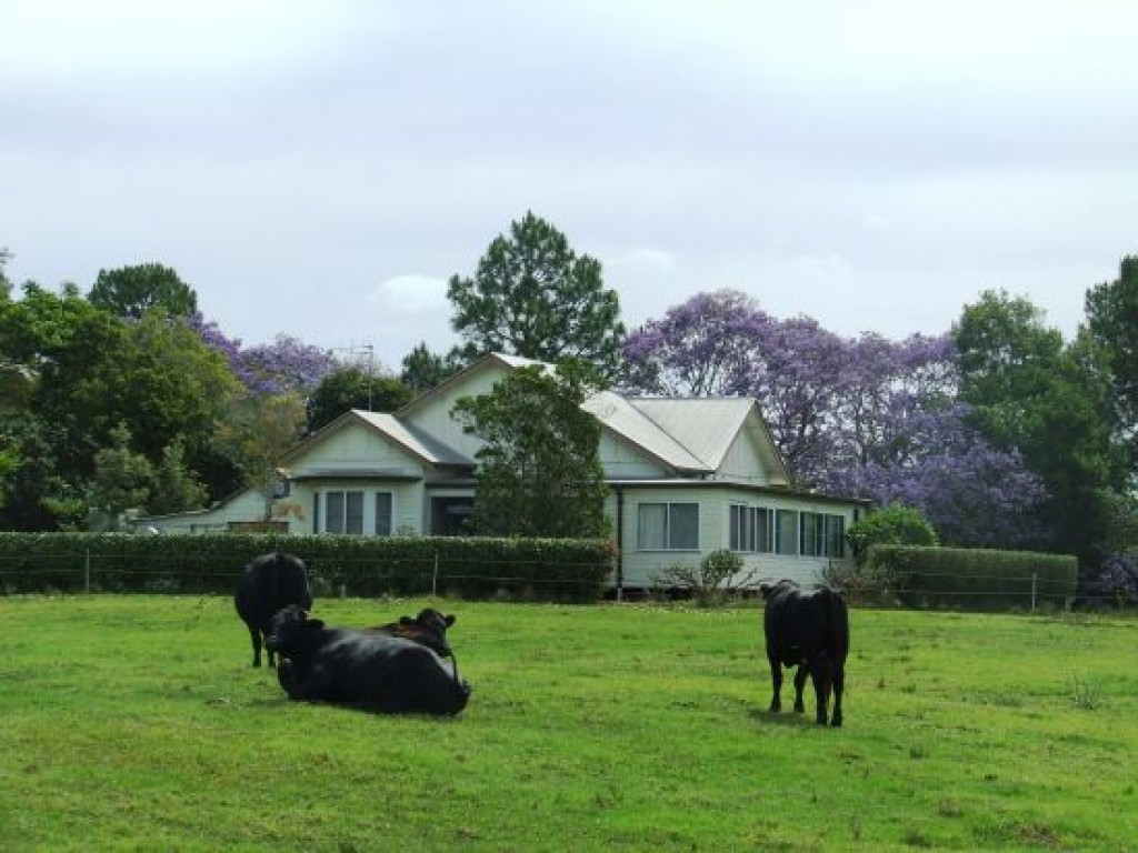 Farm for Sale - Address available by request, Rawdon Island, NSW - Farm Property