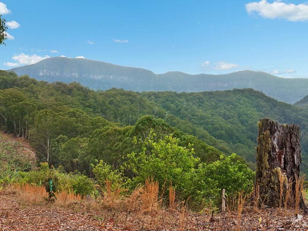 Farm for Sale - Lot 1 Chauviers Road, Upper Crystal Creek, NSW - Farm Property
