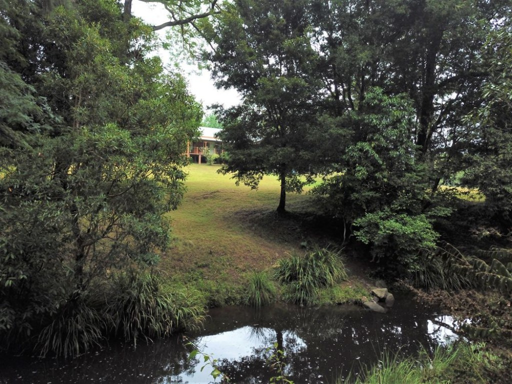 Farm for Sale - Address available by request, Toms Creek, NSW - Farm Property