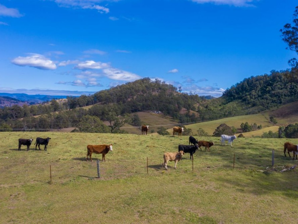 Farm for Sale - Address available by request, Bellbrook NSW - Farm Property