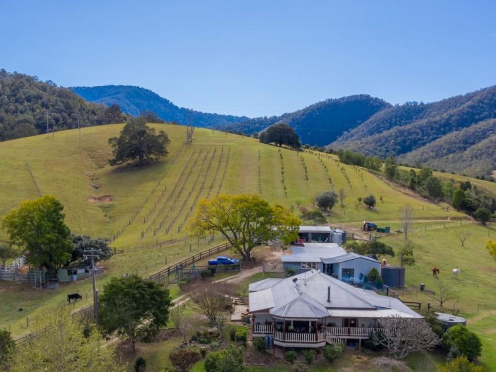 Farm for Sale - 4094 A Armidale Road, Bellbrook, NSW - Farm Property