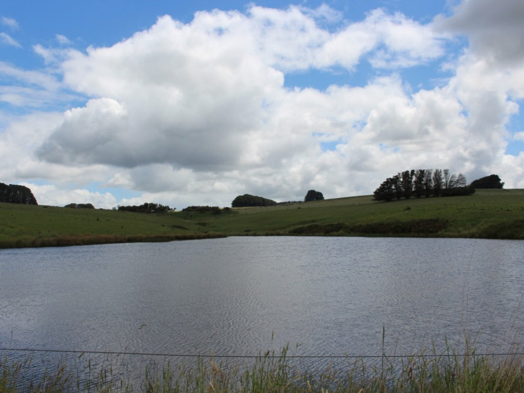Farm for Sale - 283 Tomahawk Creek Road, Simpson VIC - Farm Property