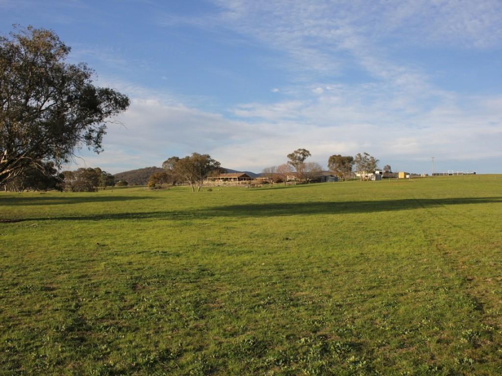 Farm for Sale - 219 Mersing Road, Glanmire NSW - Farm Property