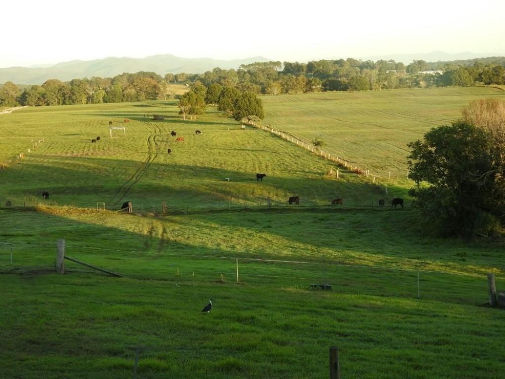 Farm for Sale - 126 Marys Bay Road, Euroka, NSW - Farm Property