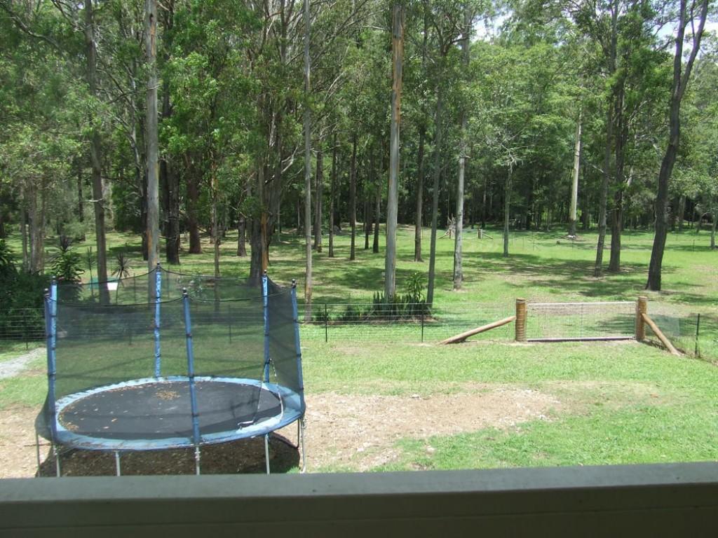 Farm for Sale - 128 Ferrier Drive, Yarravel NSW - Farm Property