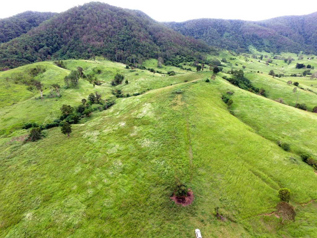 Farm for Sale - Lot 3 Eastern Mary River Road, Conondale QLD - Farm Property