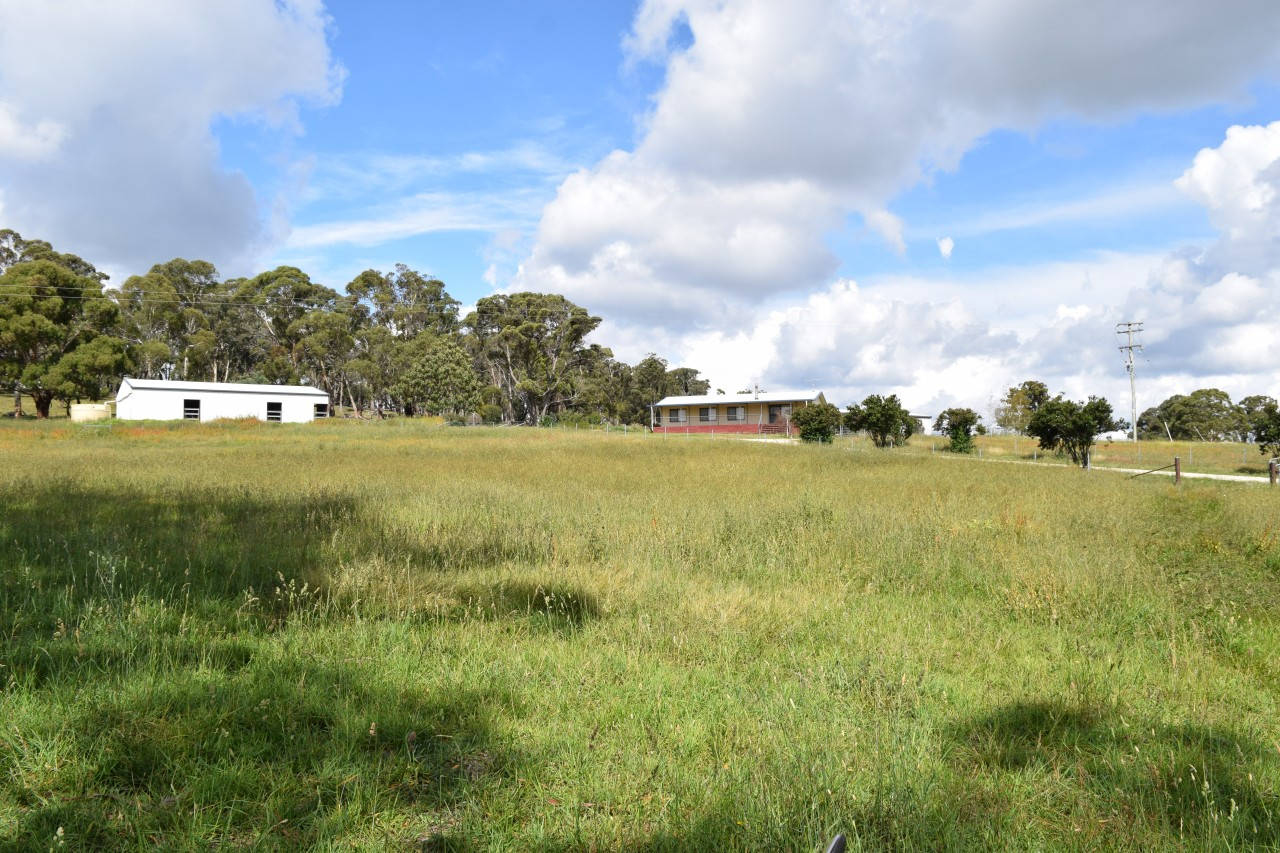 Farm for Sale - 1011 Lagoon Road, Black Mountain NSW - Farm Property