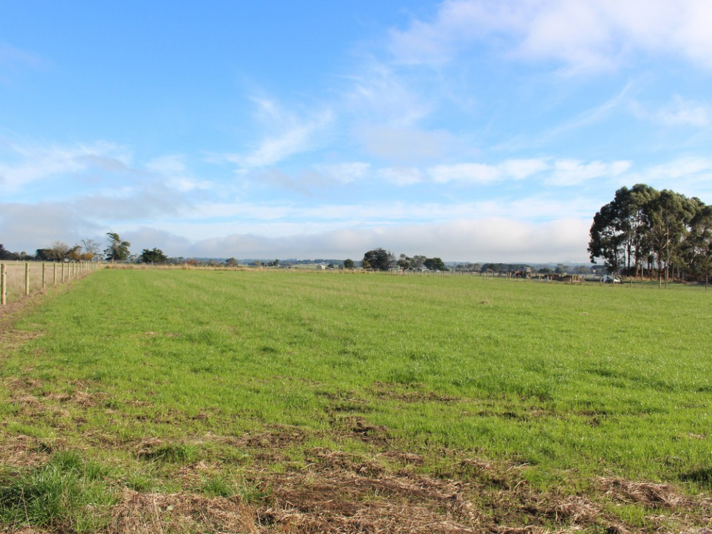 Farm for Sale - 245 Deans Creek Road, Colac West VIC - Farm Property