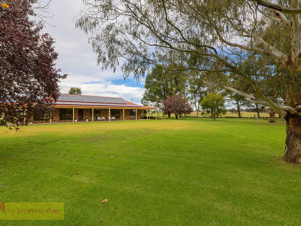 Cooyal Park<br />436 Spring Creek Road Gulgong - NSW