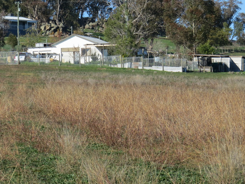 Farm for Sale - 38 Milburn Creek Road, Woodstock NSW - Farm Property