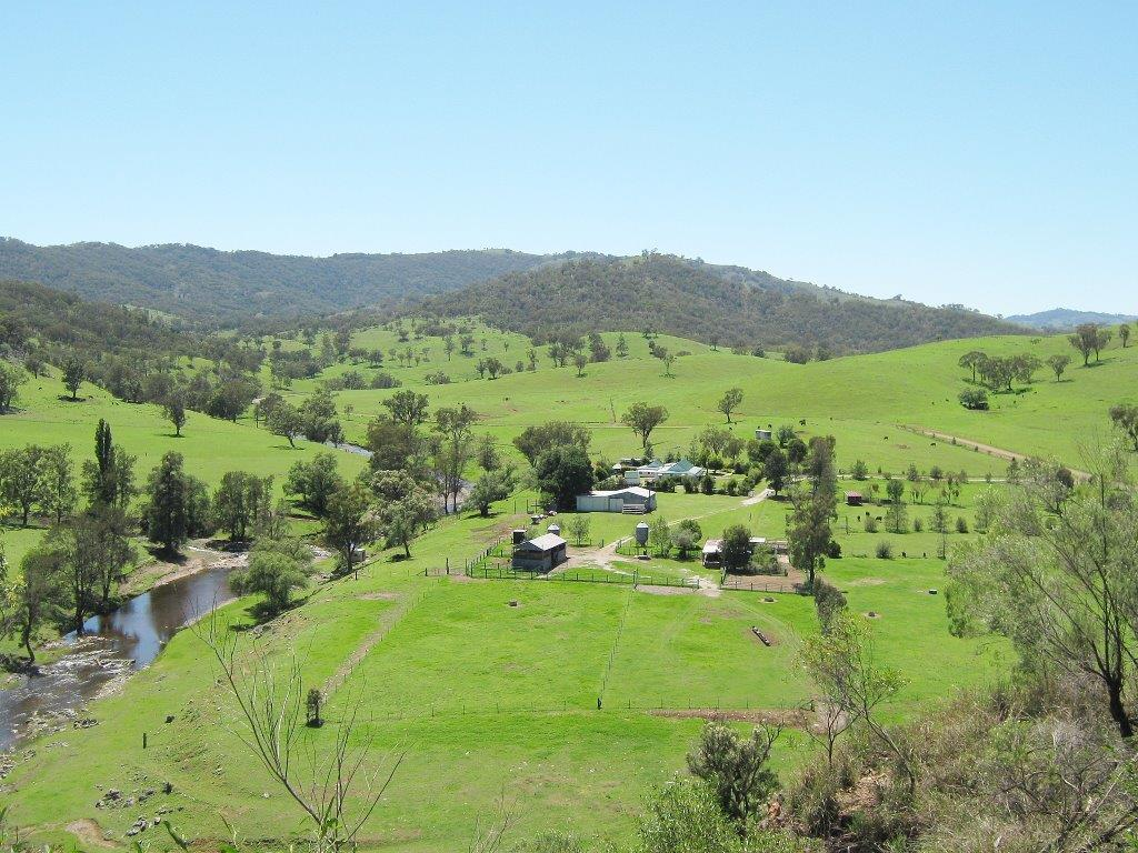 Farm for Sale - 27 Limbri-Weabonga Road, Tamworth NSW - Farm Property