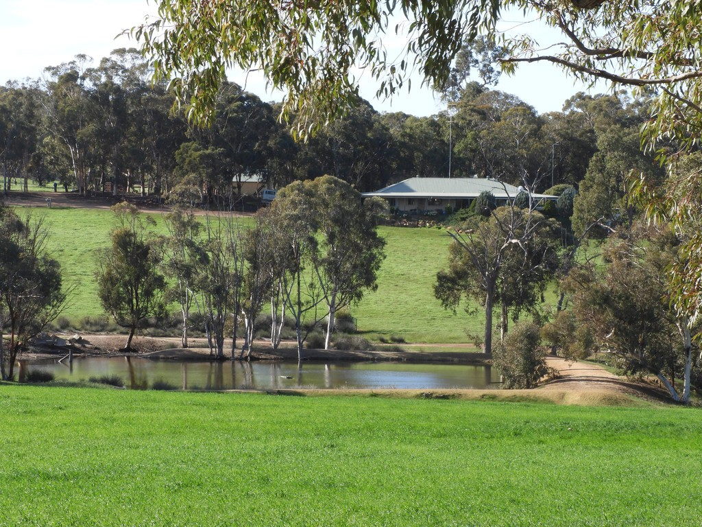 Farm for Sale - Braysey, 9 Berry Brow Rd, Bakers Hill WA - Farm Property