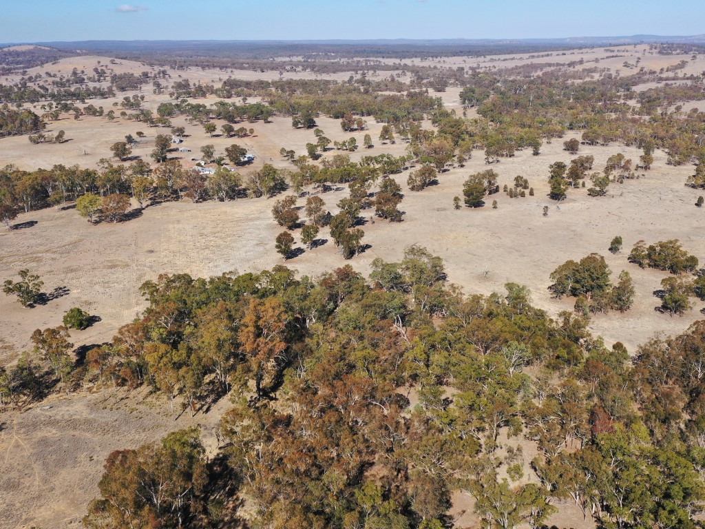 Lot 1 Wickham Road Thanes Creek - Qld