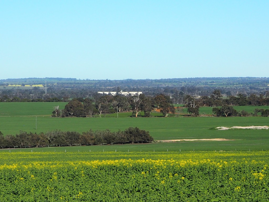 Farm for Sale - Somerset 359 Jam Creek Road, Tambellup WA - Farm Property