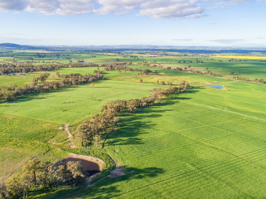 Farm for Sale - 'Valley of Springs South' Tallarook Road, Cowra NSW - Farm Property