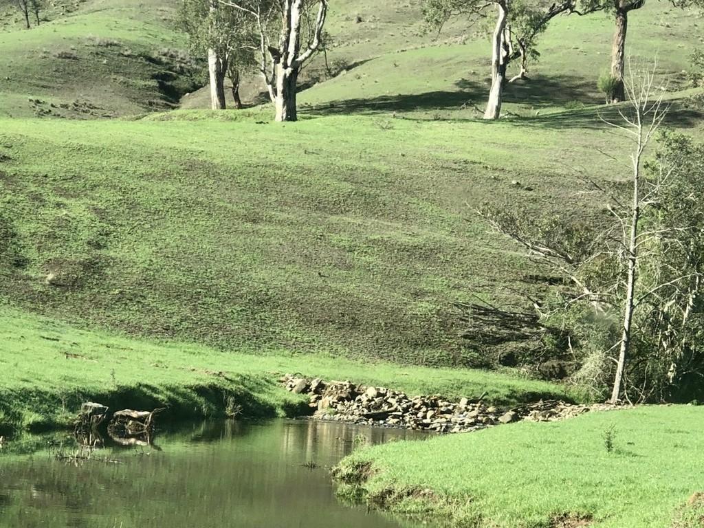 Farm for Sale - 200 Coxs Creek Road, Wallaringa via, Dungog NSW - Farm Property