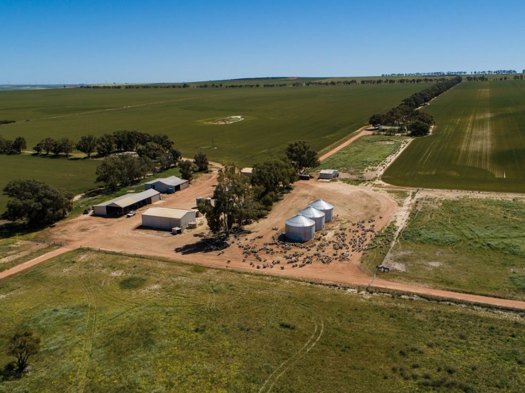 Farm for Sale - 2677 Allanooka Springs Road, Allanooka WA - Farm Property