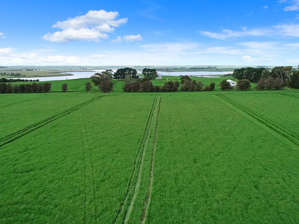 Farm for Sale -  Darlington-Carranballac Road, Pura Pura VIC - Farm Property