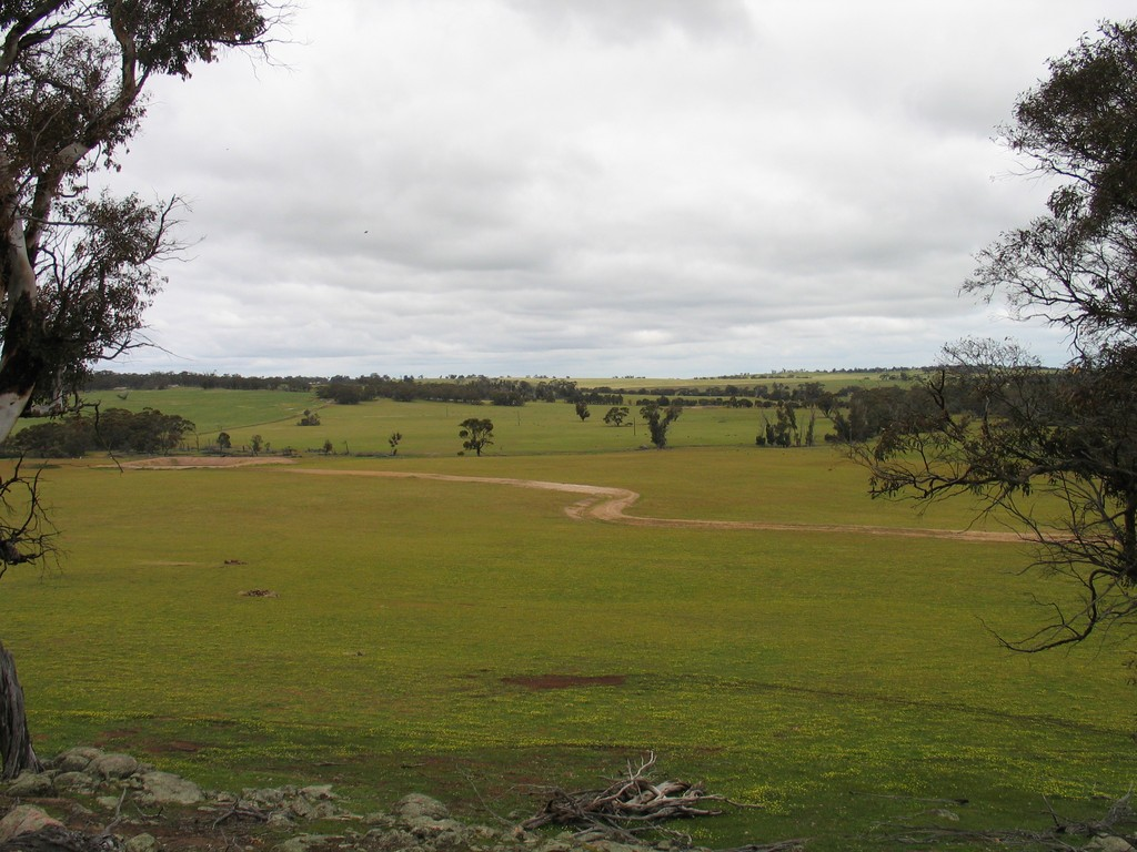 Farm for Sale - Browns Clarke Road, Coalfields Highway, Arthur River WA - Farm Property