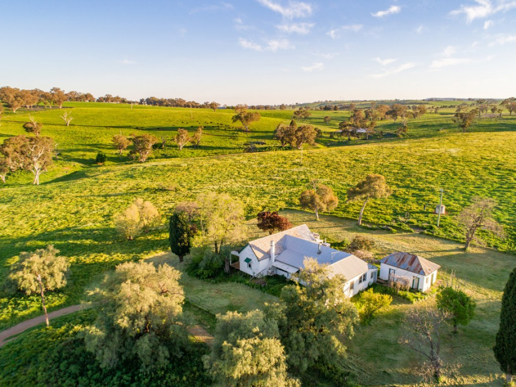 Farm for Sale - 233 Baghdad Road, Cargo NSW - Farm Property