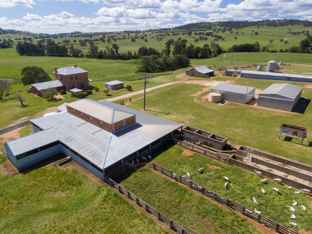Farm for Sale - 97 Yarras Lane, Yarras NSW - Farm Property