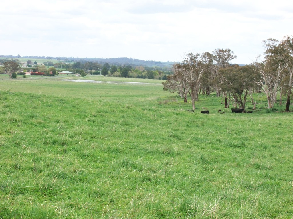 Farm for Sale - 397 Forest Road, Spring Hill NSW - Farm Property