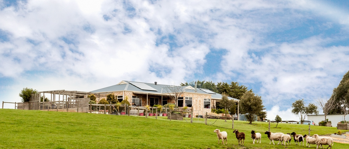 Farm for Sale - 3765 Strzelecki Highway, Mirboo North VIC - Farm Property