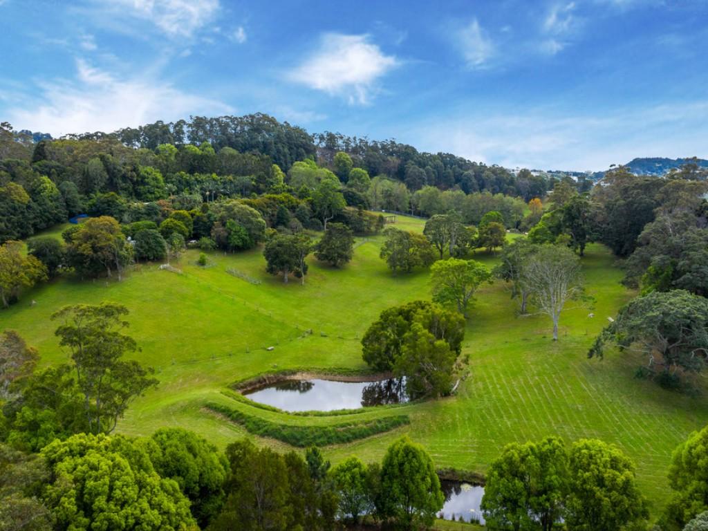 Farm for Sale - 205 Upper Duroby Creek Road, Upper Duroby NSW - Farm Property