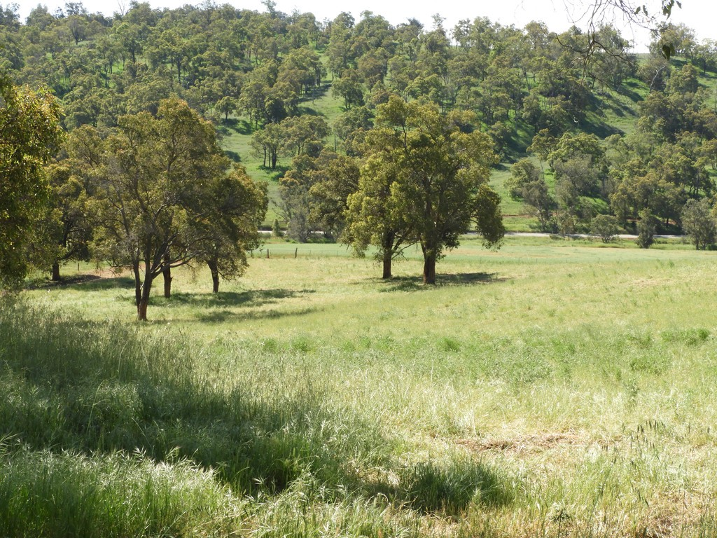 Farm for Sale - Lot 713 Chittering Rd Lower Chittering, Chittering WA - Farm Property