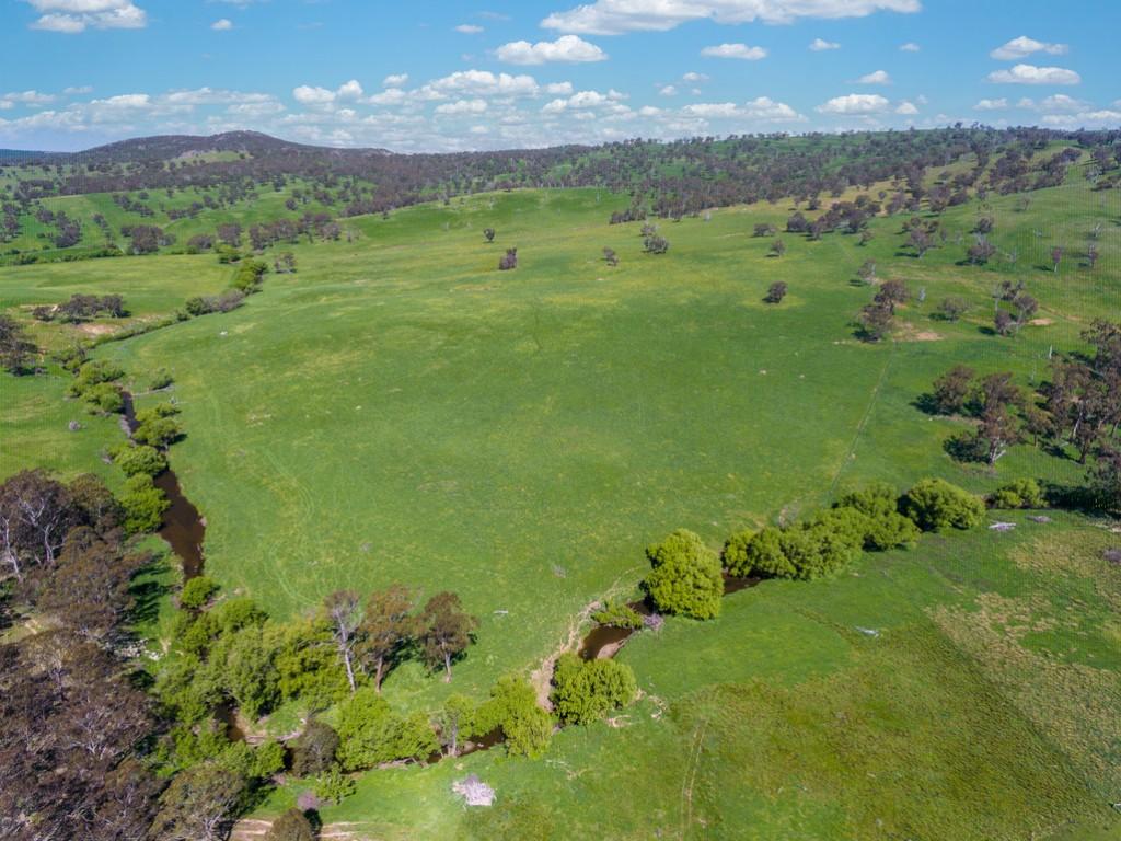 Farm for Sale - 1859 Beaconsfield Road, Oberon NSW - Farm Property