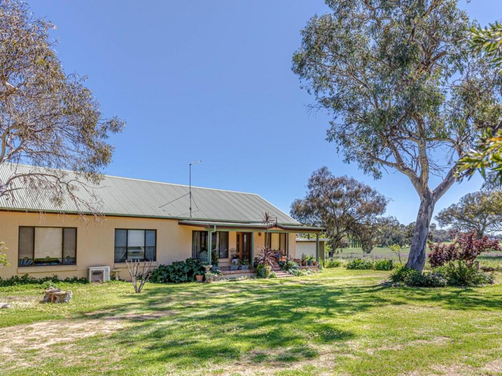 Rural Property & Farms for Sale - 6 Sullivans Lane - Farm Property