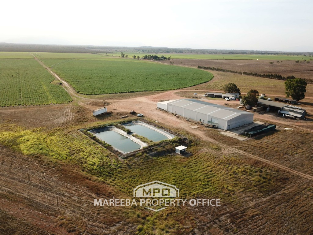 Farm for Sale - 341 Mulligan Highway, Mareeba QLD - Farm Property