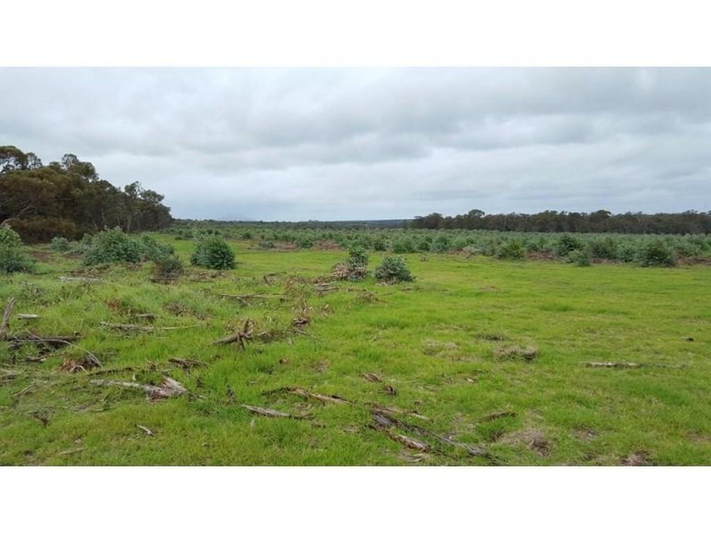 Farm for Sale - MarleySth 45016 South Coast Highway, Upper Kalgan, WA - Farm Property