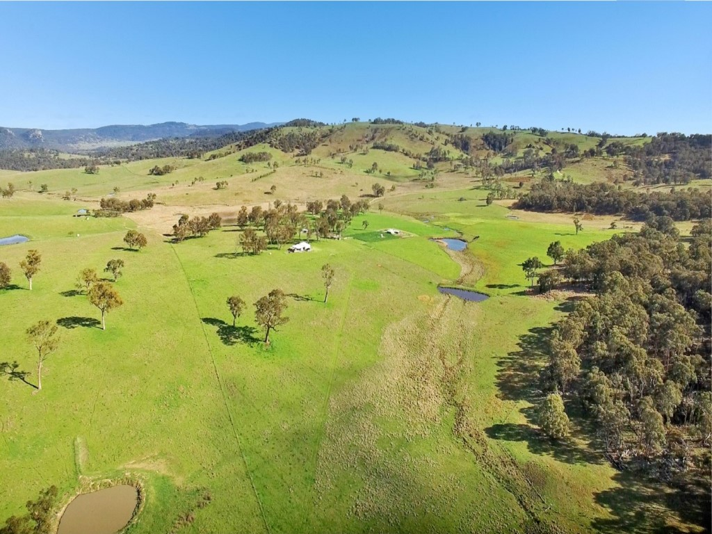 Farm for Sale - 603 Snakes Valley Road, Tenterfield, NSW - Farm Property