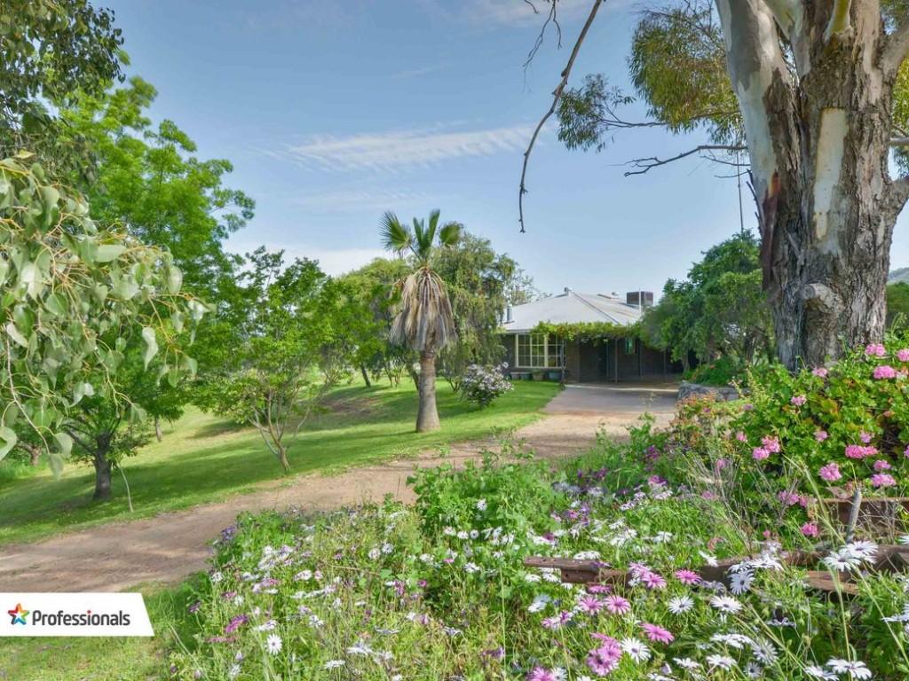 475 Tintinhull Road, Tamworth, NSW 2340