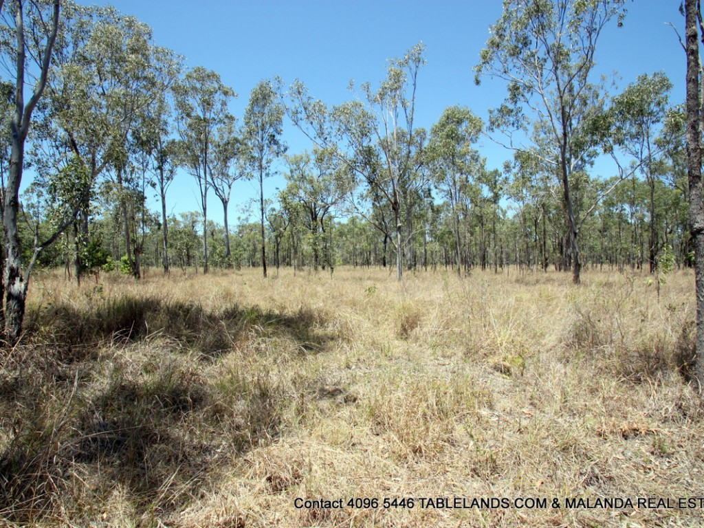 Farm for Sale - Address available by request, Millstream QLD - Farm Property