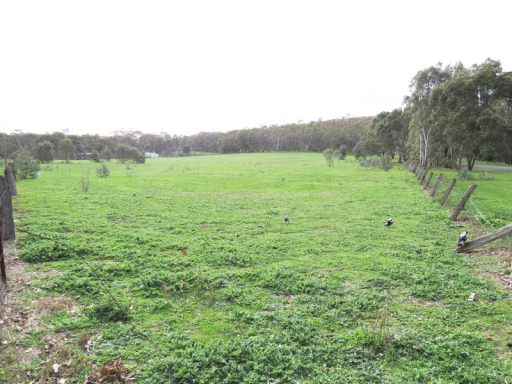 Farm for Sale - 60 Caldwell Street, Heathcote VIC - Farm Property
