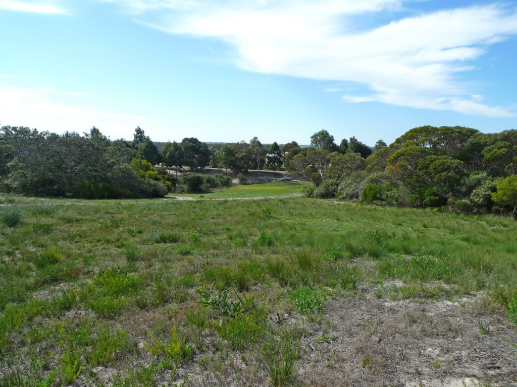 Farm for Sale - Lot 114 Tranquil Drive, Windabout, WA - Farm Property