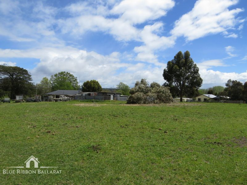 Farm for Sale - 137  Pitfield - Scarsdale Road , Scarsdale, VIC - Farm Property