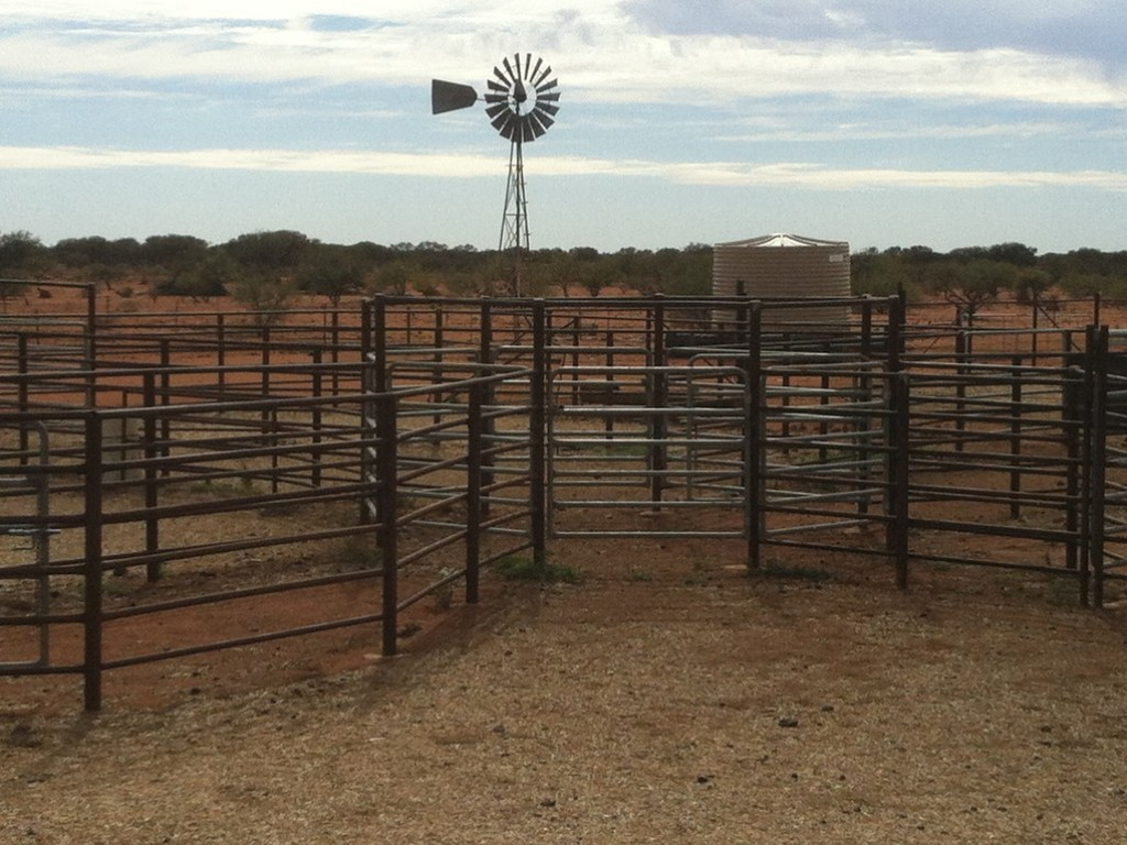 Farm for Sale - Milly Mill & Beringarra Stations, Murchison, WA - Farm Property