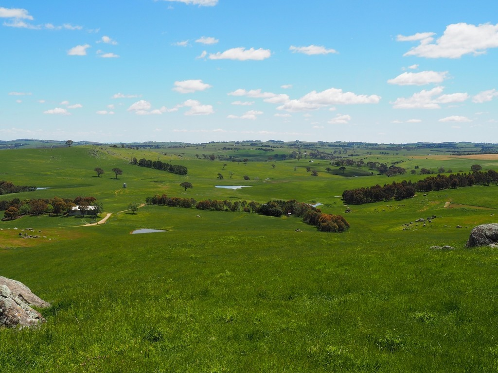 Farm for Sale - Address available by request, Blayney, NSW - Farm Property