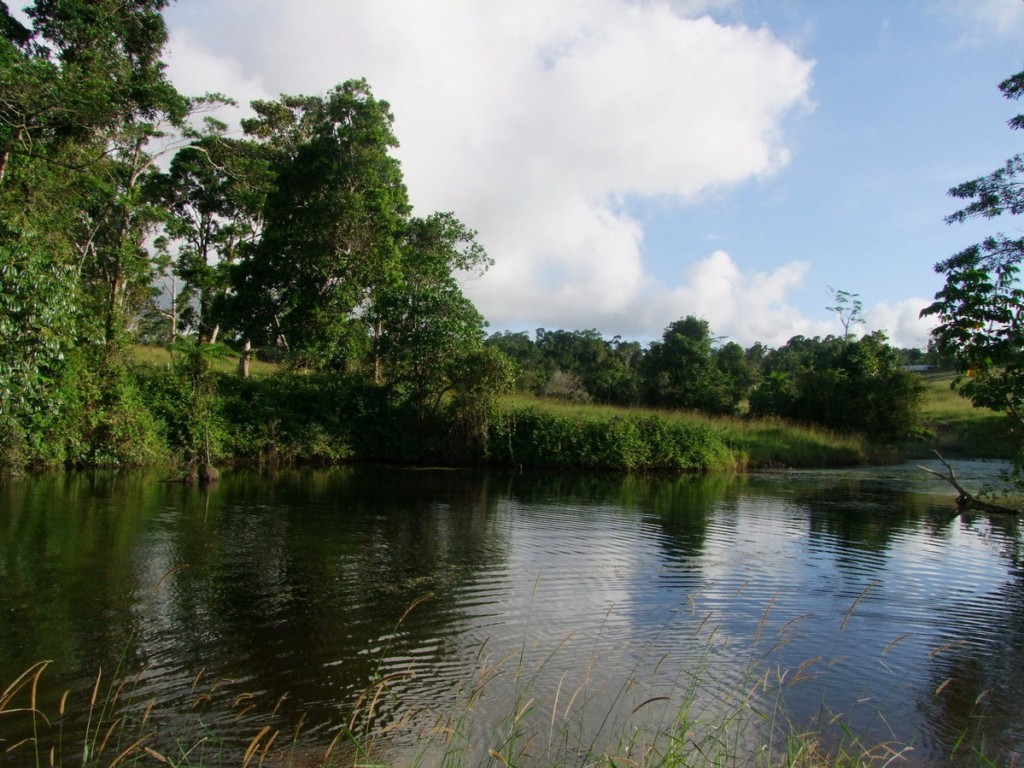 Address available by request, Millaa Millaa, QLD 4886