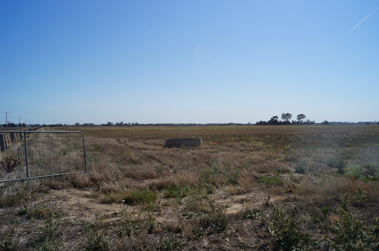 Farm for Sale -  Cnr of Two Tree Road & Carag Road, Stanhope, VIC - Farm Property