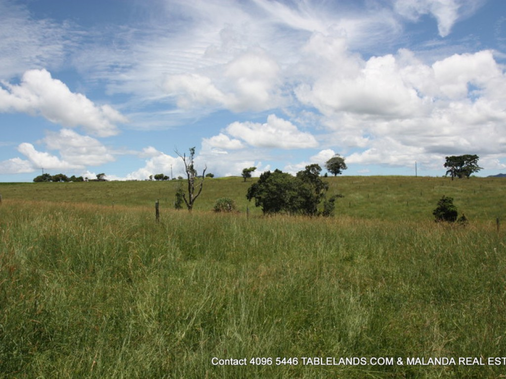 Farm for Sale - Address available by request, Millaa Millaa QLD - Farm Property