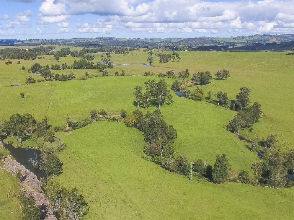 Farm for Sale - Address available by request, Dungog NSW - Farm Property