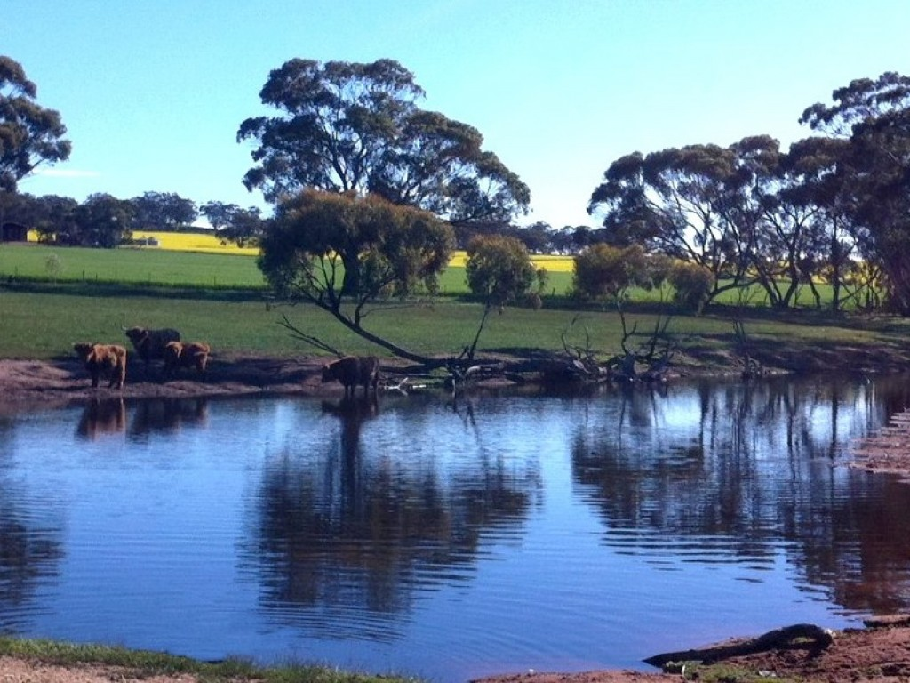 Farm for Sale - Address available by request, Toodyay WA - Farm Property