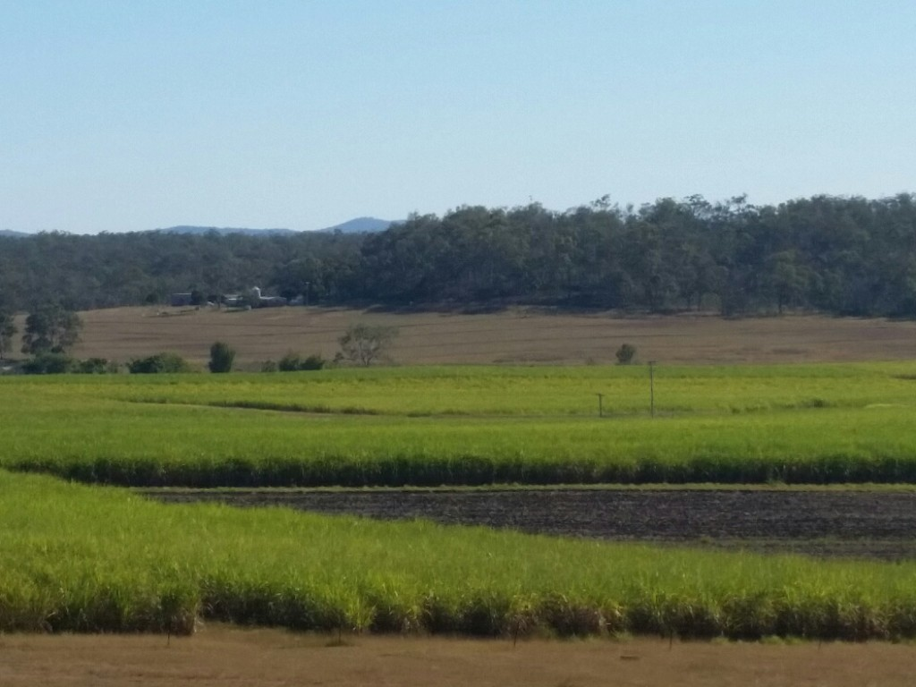 Farm for Sale - Address available by request, Gin Gin QLD - Farm Property