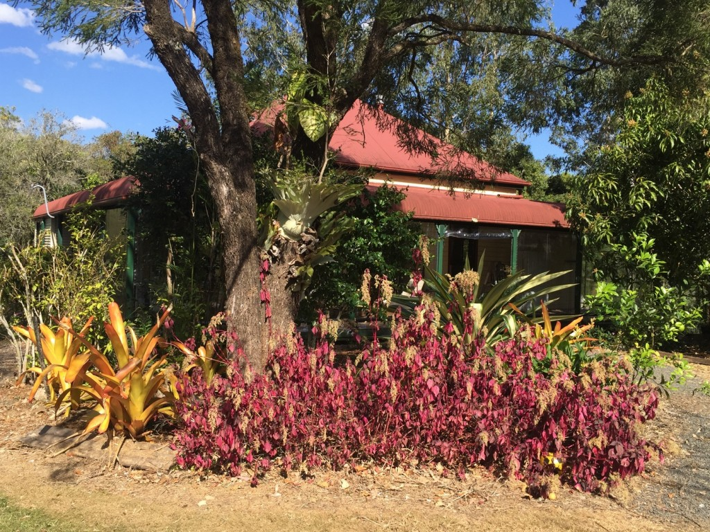 Farm for Sale - 1/5 Hensen Road, Nimbin NSW - Farm Property